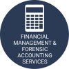 Financial Management & Forensic Accounting Services